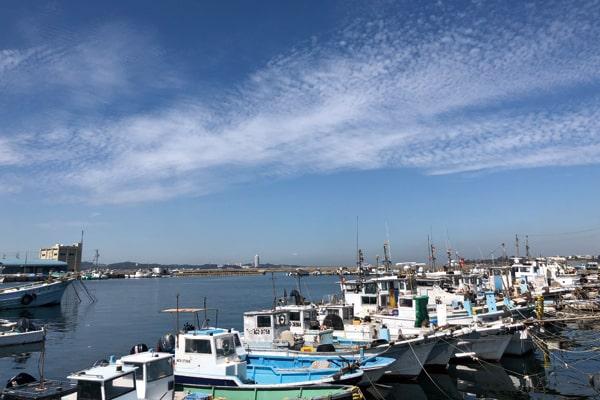 篠島の漁業